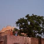 jodhpur tourisme Inde